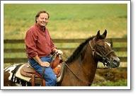 Schweitzer horse
