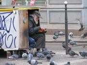 Homelesspigeons_1