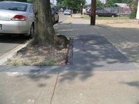 Rubbersidewalks2