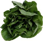 Spinach_2